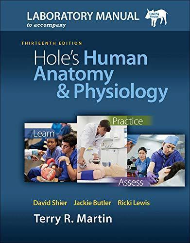 Human anatomy essays