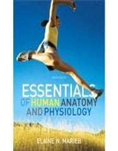 Essentials Human Anatomy by Marieb - Direct Textbook